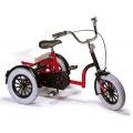 Rowerek trójkołowy dla dzieci  2102